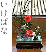富寿し店内の生け花