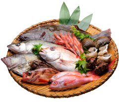Niigata local fish