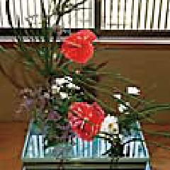 Ikebana (Flower Arrangement)